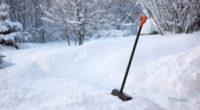 Вывоз снега с территории обслуживаемой УК ООО Визит-М на 11.02.2020г.